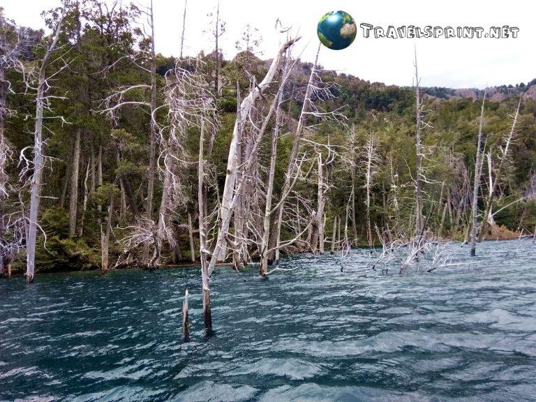 Bosque Sumergido, Villa Traful, correre in Patagonia