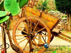 Carretto Siciliano, Custonaci, correre in sicilia