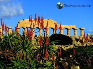 Tempio C , Selinunte, correre in sicilia