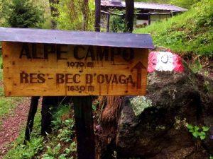 alpe-campo-varallo-res-correre-in-valsesia